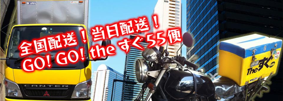 全国配送!当日配送!GO!GO!theすぐ55便